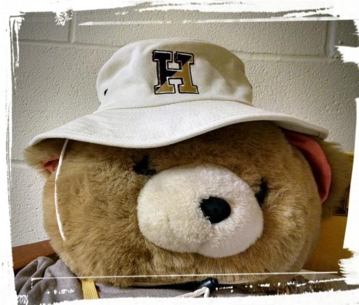 Bear in a Bucket Hat
